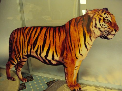 Tīģeris (DZ02) Tiger figure for rent Тигр