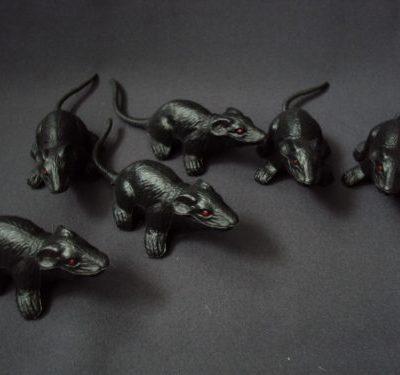 Žurkas (DZ18) Rats Крысы