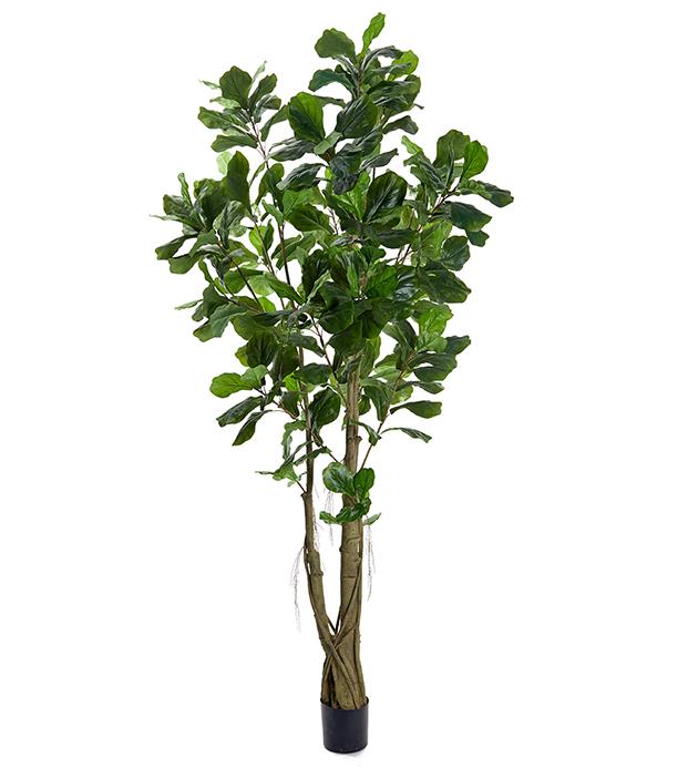Mākslīgs fikuss 2.7m (MKO8) Искусственный фикус artificial ficus tree