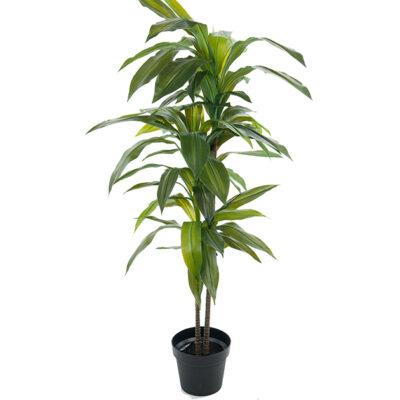 """Mākslīgs koks """"Dracena"""" (MKO2) Искусственное дерево """"Драцена"""" Artificial tree"""