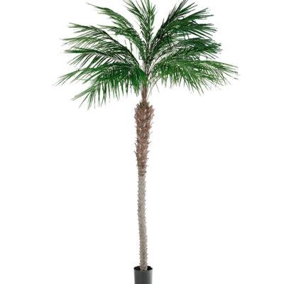 Mākslīgā palma 3m (MKO11) Искусственная пальма Artificial palm tree