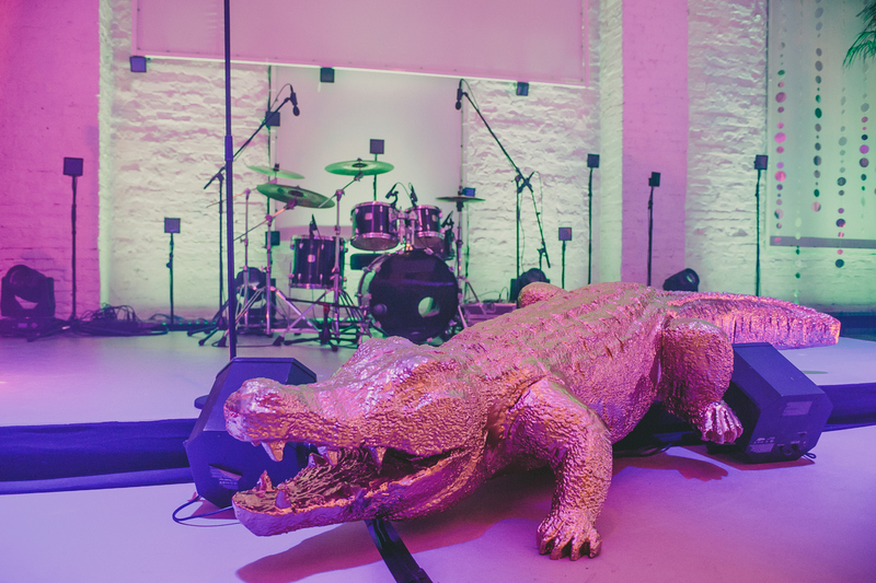 Krokodils (DZ21) Crocodile (DZ21) Крокодил (DZ21)