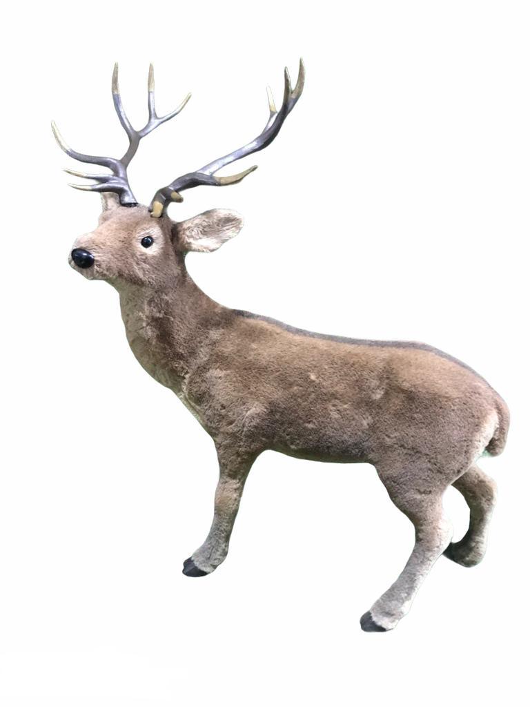 Briedis Deer Олень