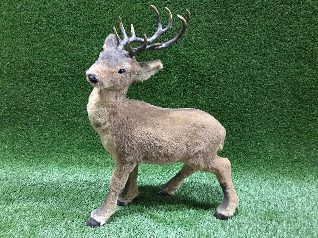 Briedis (DZ35) Олень Deer