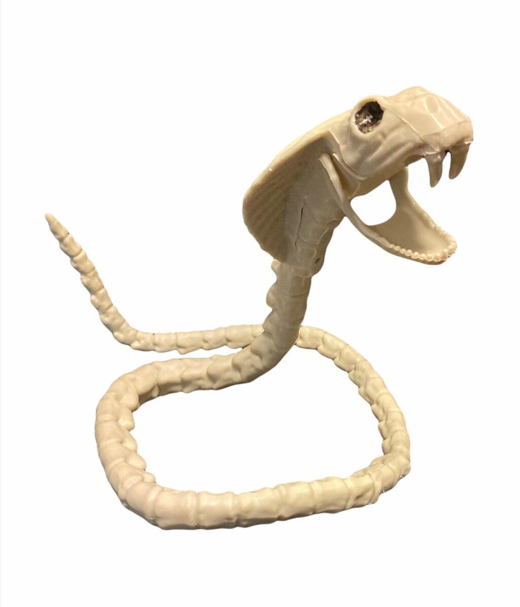 Čūskas skelets