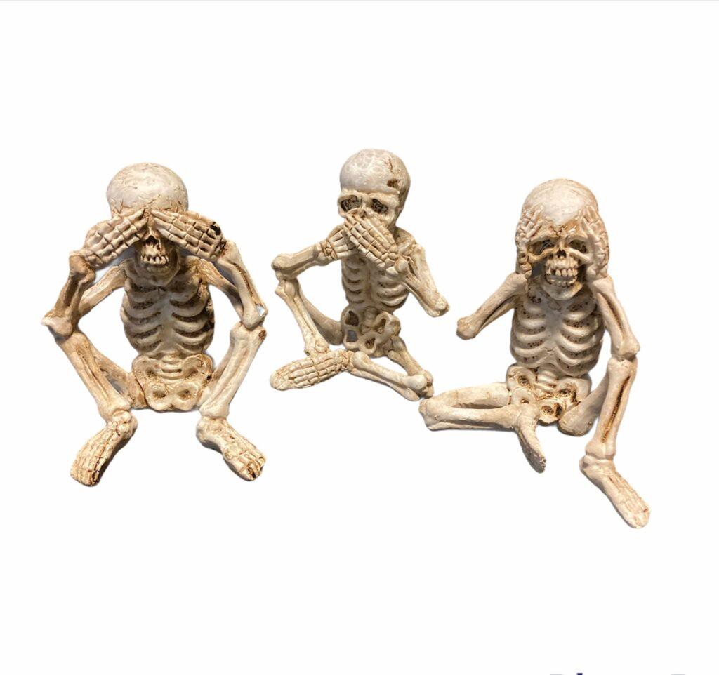 Mini skeleti